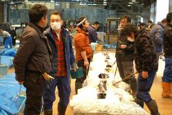 三崎漁港でのマグロ協議会