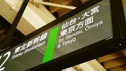 またまた東京に