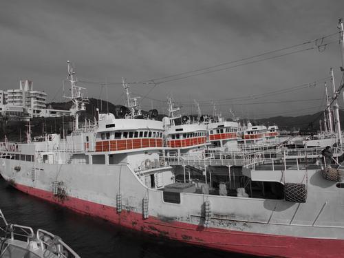 勝倉漁業の年末年始休暇について