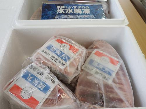 冷凍マグロの製品サンプル