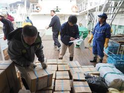 インド洋への出漁準備完了