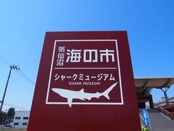 気仙沼シャークミュージアム