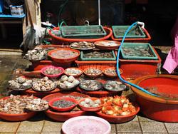 釜山港の市場を見学して