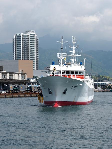 123勝栄丸が清水入港