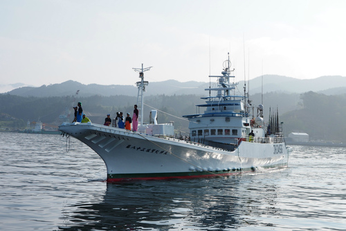 気仙沼漁協での表彰式
