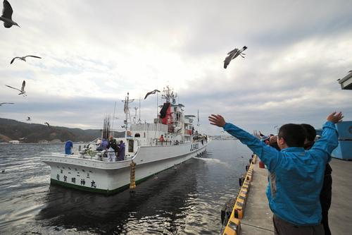 三陸沖の戻りガツオ終漁