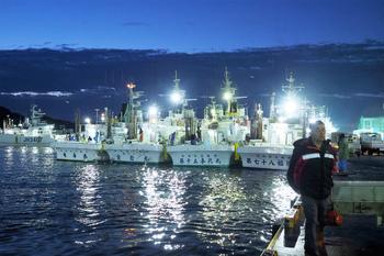 カツオ船が31隻も入港して