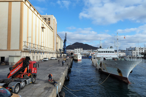 NHKが LasPalmasでマグロ船に密着