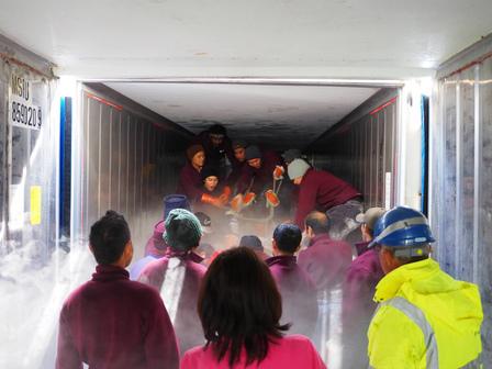 第1勝栄丸のマグロ入庫