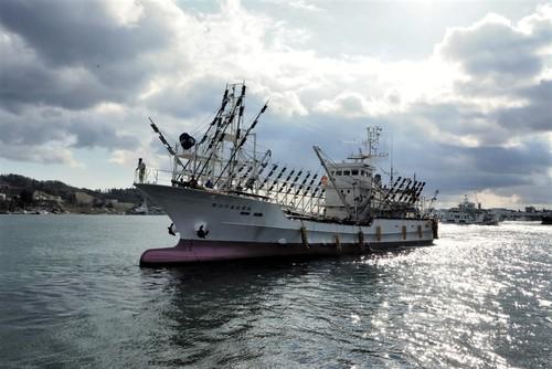 大型サンマ漁船が続々終漁に