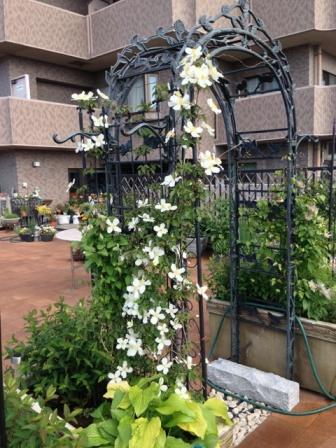 田鶴子の庭日記2013春