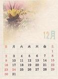 ◆カレンダー作成◆