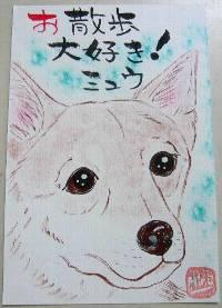 柴犬も かわいい!