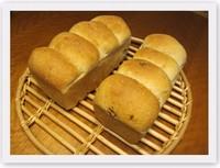 最近のお気に入りパン