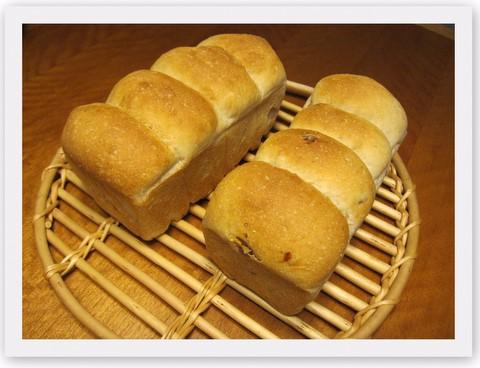 バウンド型パン