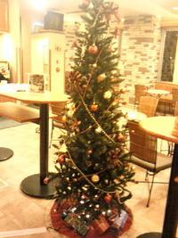 もうクリスマス☆