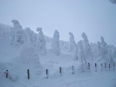 蔵王の雪景色