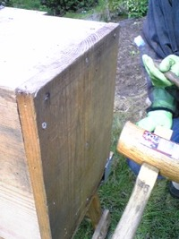2010年10月17日 採蜜の様子をレポートします