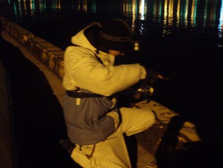 漁港クラブ15~ミッドナイト群れ群れ