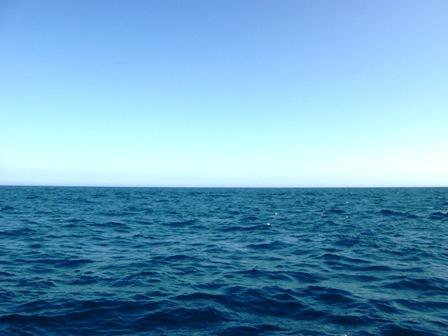 青い空、青い海、青い顔。
