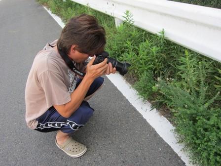 番長のカメラ日記。あとイカ。