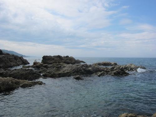 日本海アオリ調査