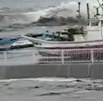青森県おいらせ町、津波の様子