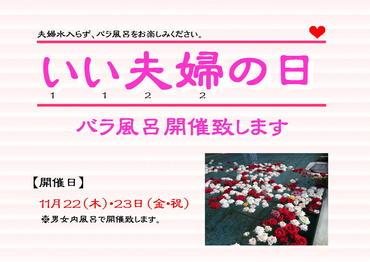 いい夫婦の日『バラ風呂』開催決定!