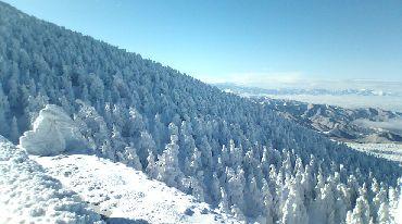 スノーシーズン