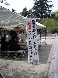 鹽竈ザクラの日、鹽竈神社で桜湯