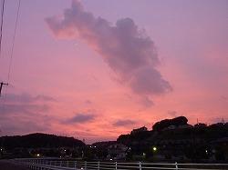 散歩:夕焼け;狂い咲き?;早くなった日没