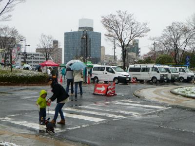 4月21日大雪の日:狂犬病予防接種