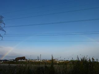 朝虹がきれいでした