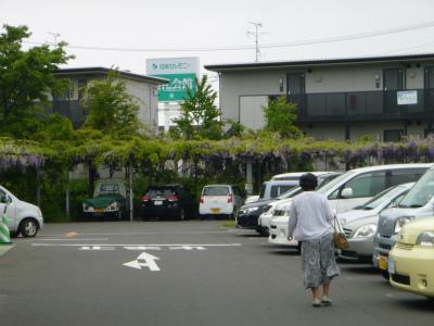 藤盛りの駐車場