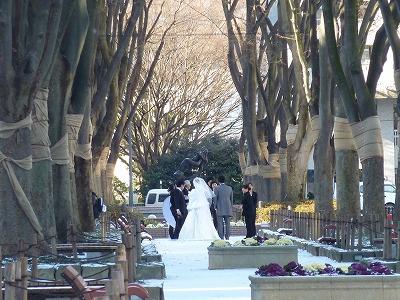 定禅寺通りの結婚式