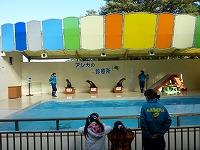 春休み:水族館