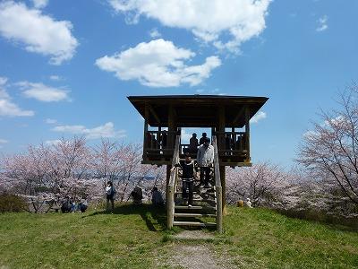 長命館:桜花見
