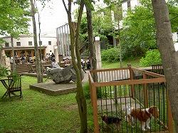 八戸旅行1:昼食はぴょんぴょん舎