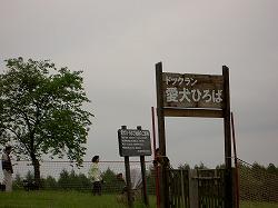 八戸旅行2:安比:もっきんばーど:ドッグラン