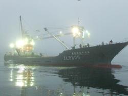濃霧の気仙沼港