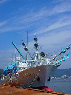大型さんま漁船 解禁