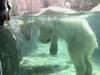 動物園楽しいよ!
