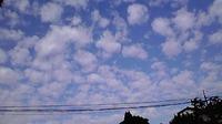 ほっこり雲