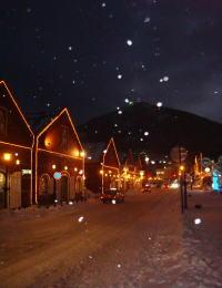 星が降る、冬の函館☆