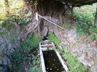 鹿角の桂井戸