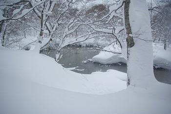 八幡平大沼、後生掛でスノーシューハイキング