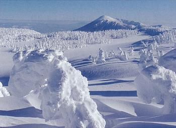 八幡平樹氷ツアー