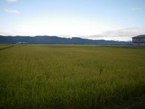 花輪の田園風景