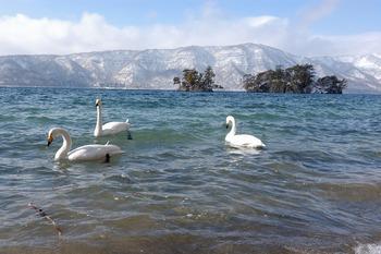 十和田湖冬物語2014