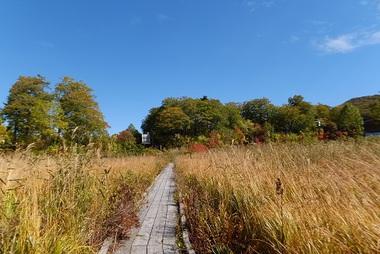 大沼の散策路